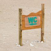 Beach Toilet Pointer