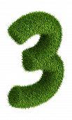 Natural grass number 3