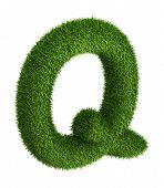 Natural grass letter Q