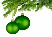 stock photo of studio shots  - Bright studio shot of two isolated green Christmas baubles hanging from fresh green fir twigs - JPG