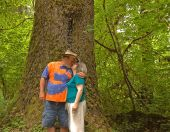 Middle Aged Couple Kissing In Rain Forest