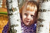 stock photo of cun  - Cunning little girl stands between birch on a sunny day - JPG