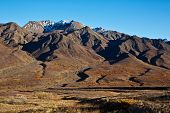 stock photo of denali national park  - Autumn colors in Alaska - JPG