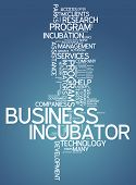 Word Cloud Business Incubator