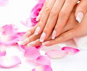 image of french manicure  - Manicure and Hands Spa - JPG
