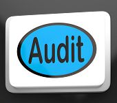 Audit Button Shows Auditor Validation Or Inspection