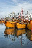 Orange Fishing Boats In Mar Del Plata, Argentina