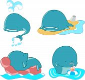 stock photo of blubber  - vector set of cartoon happy characters whales - JPG