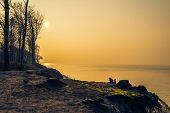 Craggy Shore Baltic Sea Afternoon