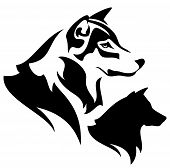 image of wolf-dog  - wolf profile outline and silhouette  - JPG
