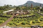 PATTAYA, THAILAND - NOVEMBER 11: Nong Nooch Tropical Garden in Pattaya on november 11, 2012 in Thail