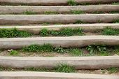 stock photo of naturel  - Wooden stair outside with weed between steps - JPG
