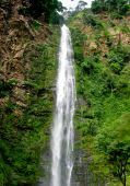 Wli Waterfall In Agumatsa Park In Ghana