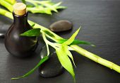 Zen Basalt Stones, Bottle With Massage Oil And Bamboo