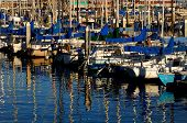 beautiful Boat harbor in Monterey california