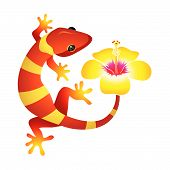 Spa-gecko