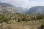 Countryside Near El Chorro. Andalucia. Spain
