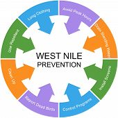 West Nile Prevention Word Circle Concept