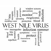 West Nile Virus Word Cloud Concept In Black And White