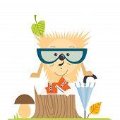 Cartoon  Hedgehog, Hipster Style