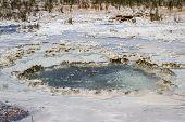 Geyser In Yellowstone