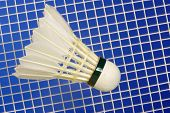 picture of shuttlecock  - Badminton Racket and white shuttlecocks with feathers - JPG