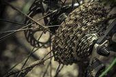 Muddy Mountain Bike Gear