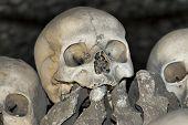 Sedlec Ossuary - Charnel House