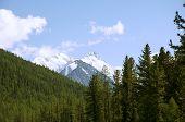 Mountain Altai, Belukha