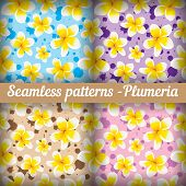 Plumeria. Set of seamless patterns. Floral background