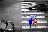 stock photo of street-walker  - pedestrian crossing with cars in the rain - JPG