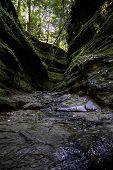 Fall Stream In A State Park