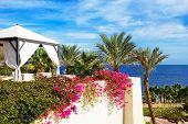 The Sea View Hut At Luxury Hotel, Sharm El Sheikh, Egypt