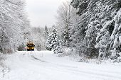 picture of tree lined street  - A school bus drives down a snow covered rural country road lined with snow covered trees after a snow storm during the winter season - JPG