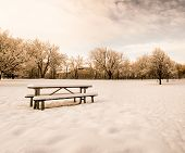 a scenic cold winter landscape with snow and trees toned with an instagram like warm filter