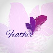 Feather Abstract Background