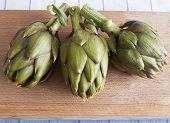 Artichoke With Thorns