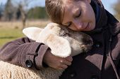Pretty Woman Hugging Intimately A Little Lamb