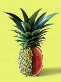 Pinemelon