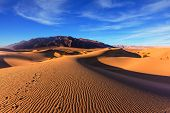 foto of mesquite  - Waves of orange sand on top of the dunes - JPG