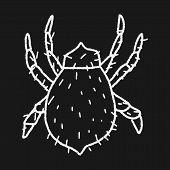 pic of mites  - Mite Doodle - JPG
