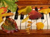 Autumn Leaves  On Piano Keys