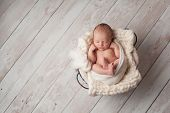 picture of sleeping baby  - A portrait of a seven day old newborn baby sleeping in a wire basket on a whitewashed wooden floor - JPG