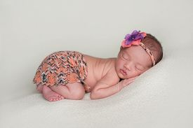 picture of mini-skirt  - A portrait of a beautiful eleven day old baby girl wearing an orange mini skirt and matching headband - JPG