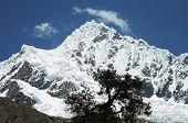 Peak Alpamayo  in Cordilleras