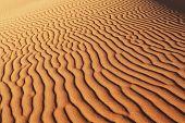 Постер, плакат: Текстура о песок