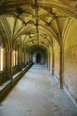 Lacock Abbey Cloisters (portrait)