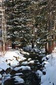 Sundance Creek In Winter