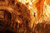 Carlsbad Caverns National Park in USA