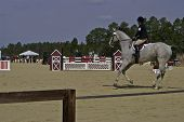 Southern Pines Horse Trials 1